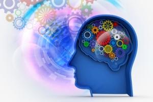 cerebro funcionamiento