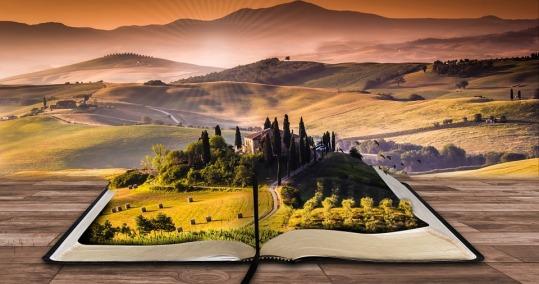 libro paisaje lectura.jpg